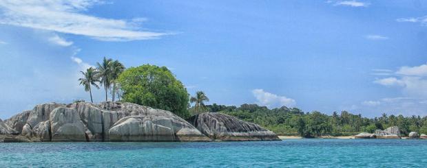 pulau kepayang atau pulau babi